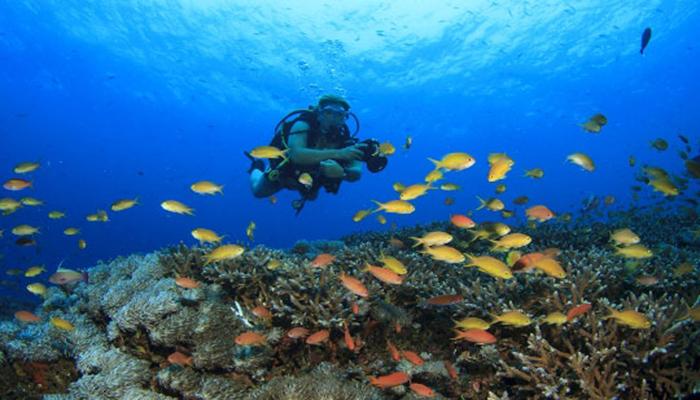 Candidasa Diving